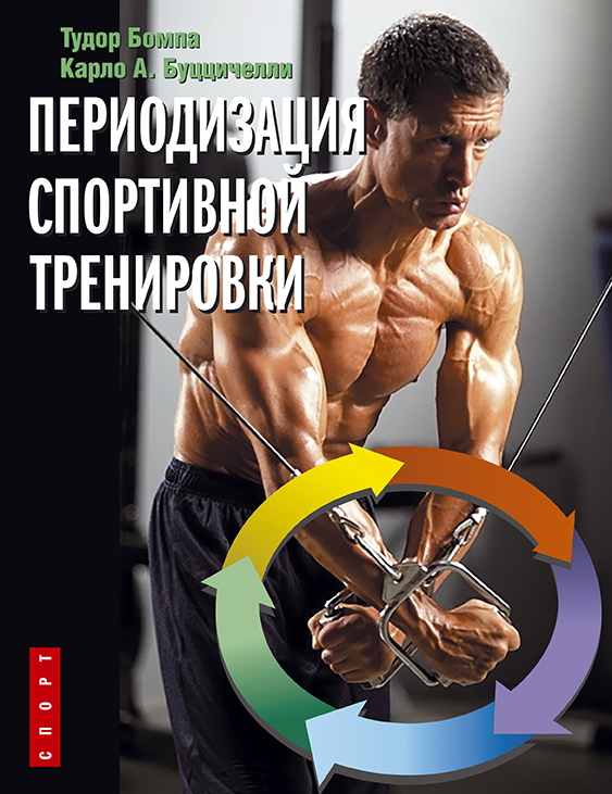 Периодизация спортивной тренировки